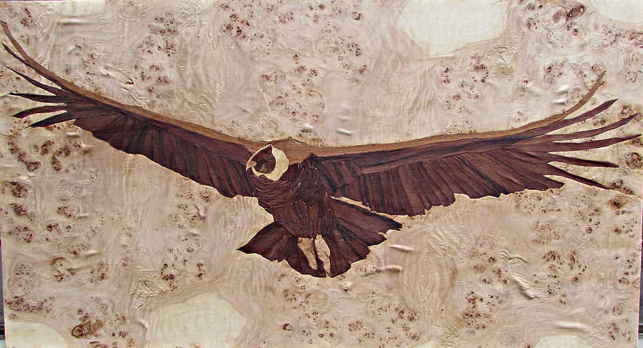 Marquetry Mixed Media - Condor by Johannes Stoeger