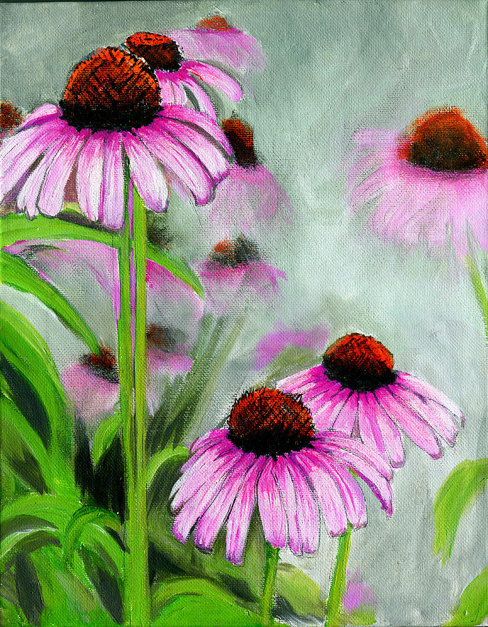 CONEFLOWERS IN THE MIST by Debbie Brown
