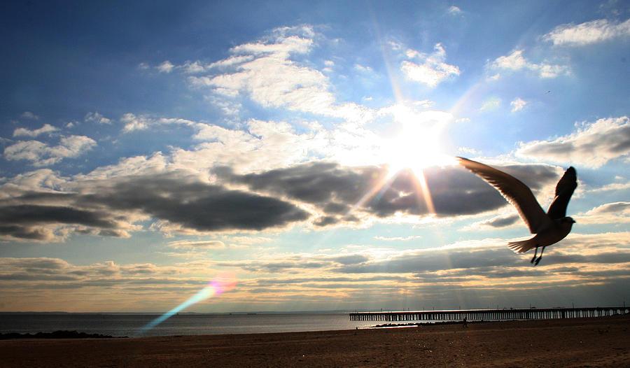 Coney Island Photograph - Coney Island Flare by Jason Hochman