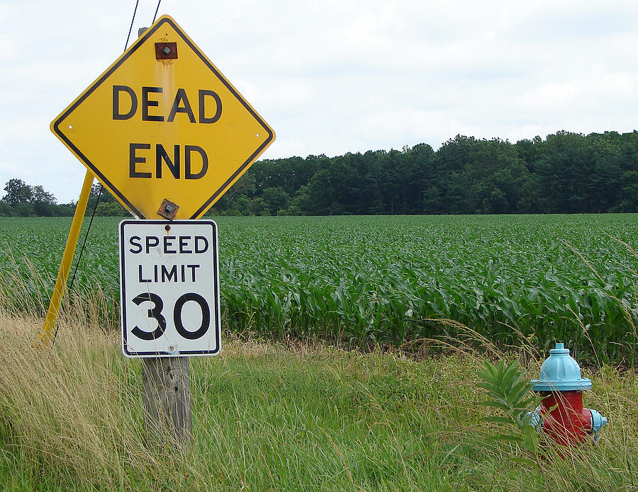 Signs Photograph - Confused by J R Seymour