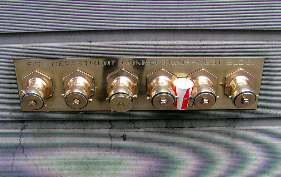Brass Photograph - Connected by Douglas Pike