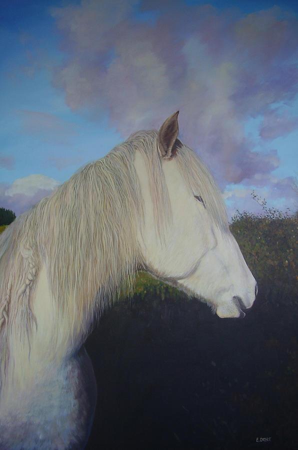 Pony Painting - Connemara Pony by Eamon Doyle