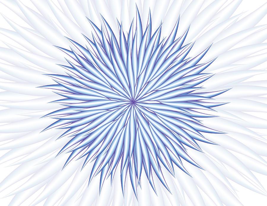 Concentrate Digital Art