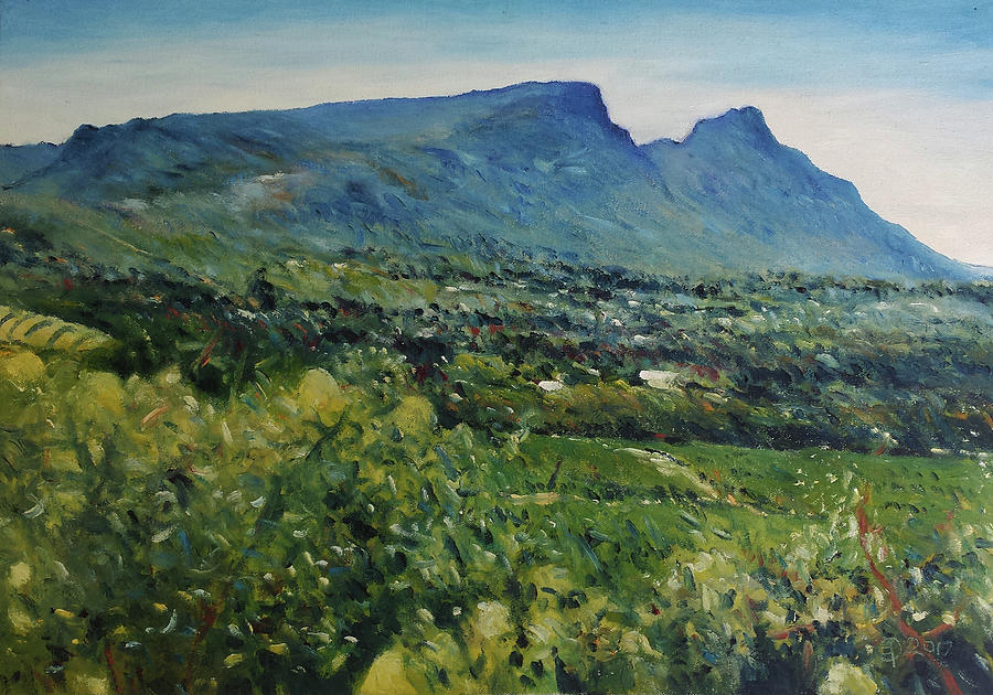 Table Mountain Painting - Constantia Valley Cape Town South Africa 2017 by Enver Larney