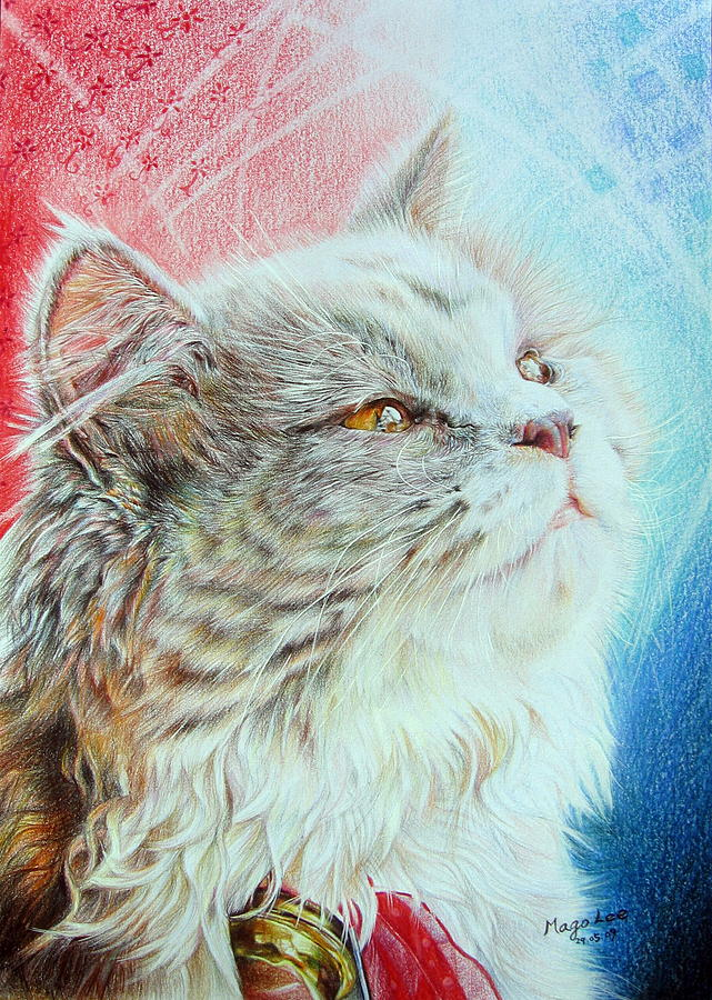 Cat Drawing - Contemplation by Mago Lee