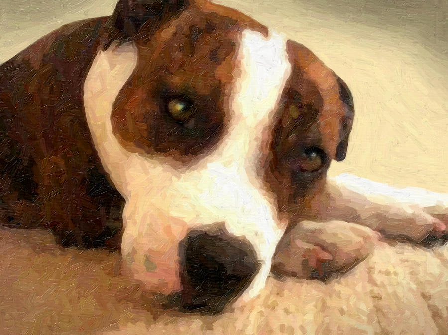Staffordshire Bull Terrier Painting - Contentment by Michael Tompsett