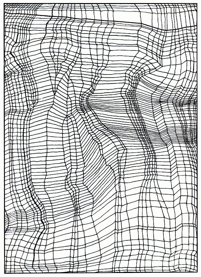 Contours Drawing - Contours by Andy  Mercer