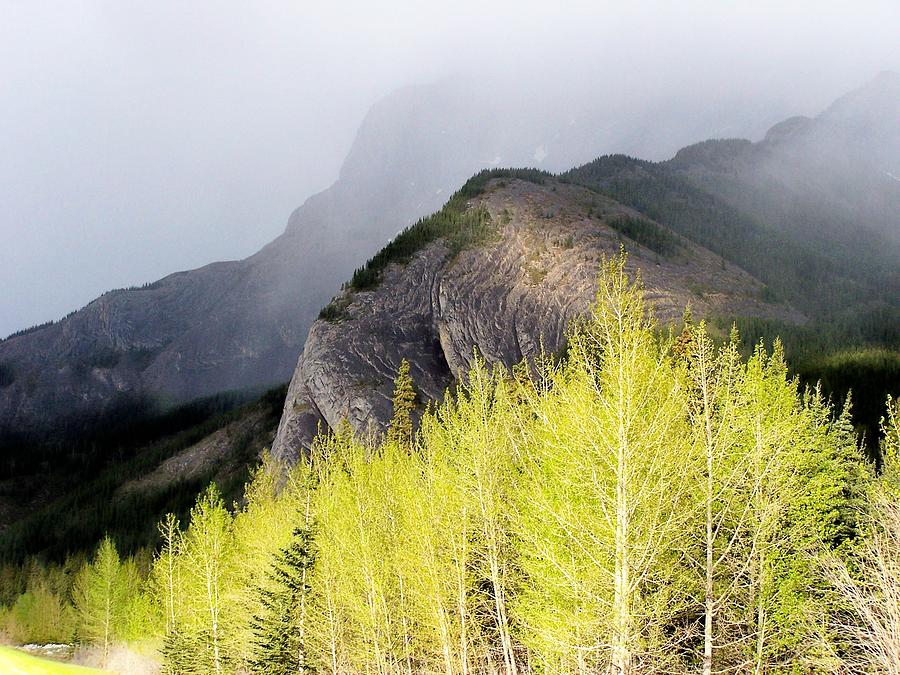 Alberta Photograph - Contrast Of Sun And Fog by Terry Jones