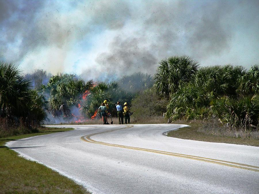 Nature Photograph - Controlled Burn by Peter  McIntosh