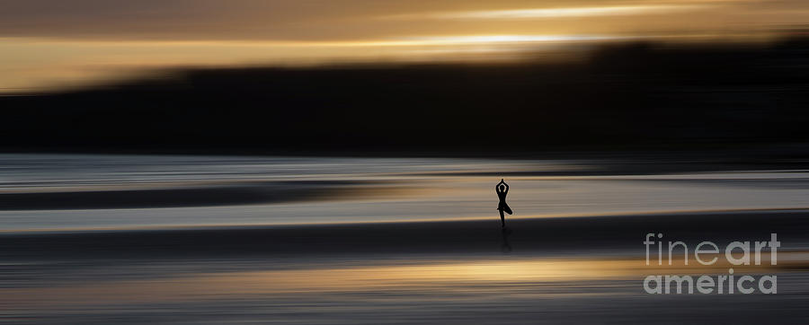 Convening with Nature by Phil Dyer