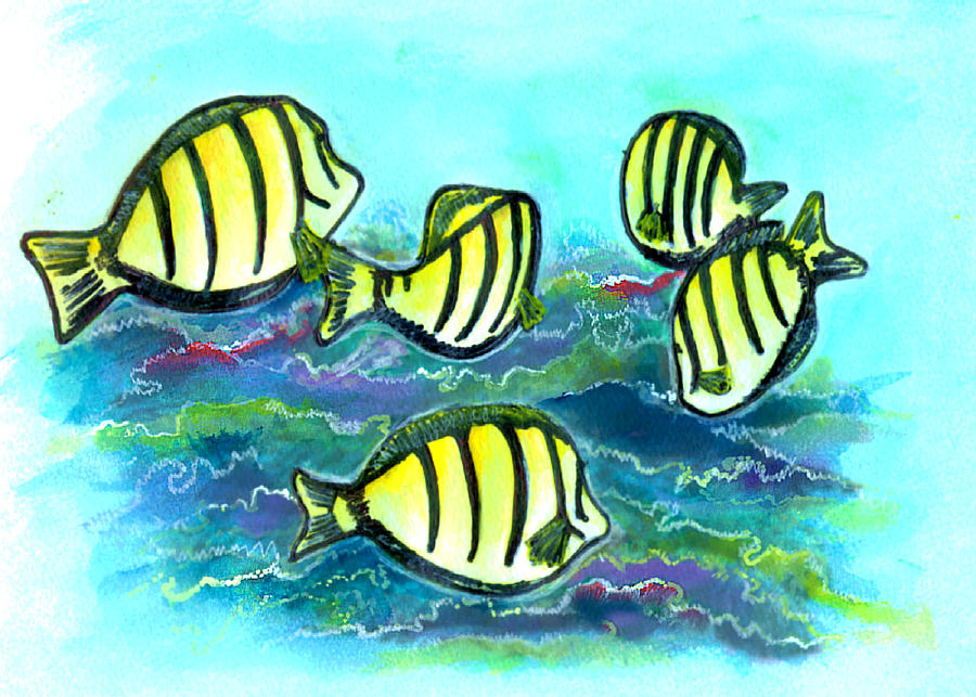 Hawaii Painting - Convict Tang Fish #209 by Donald k Hall