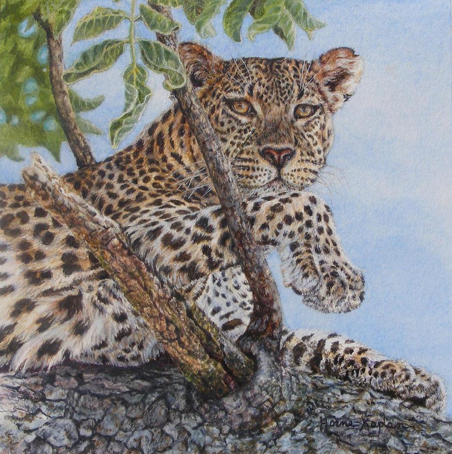 Cool Cat by Denise Horne-Kaplan