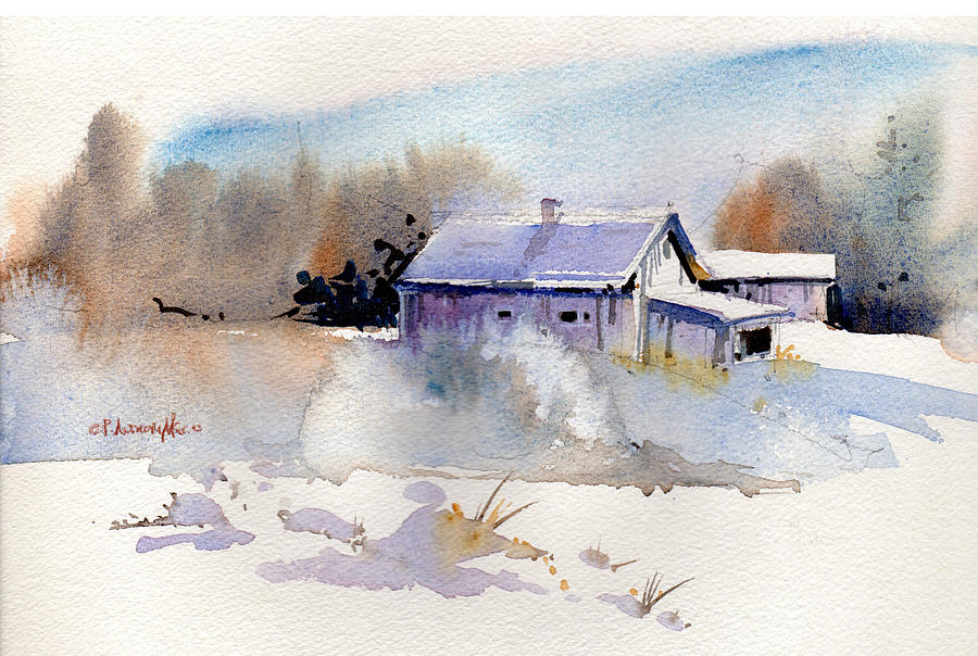 Cool Country Barn by P Anthony Visco
