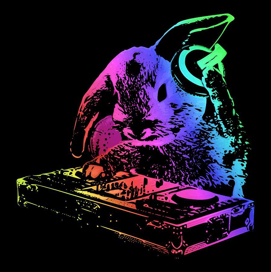 Cool Dj Bunny By Filip Hellman
