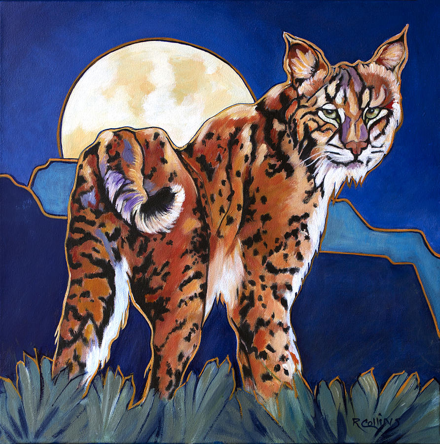 Bobcat Painting - Cool Dude by Rose Collins