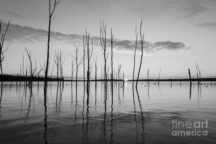 Cool Reflections In Black And White Photograph