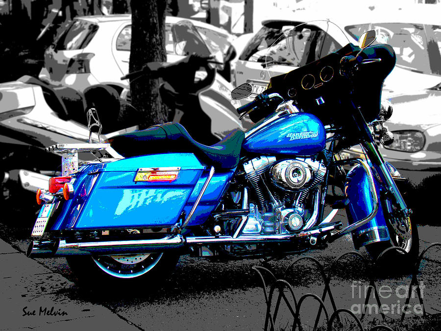 Motorcycle Photograph - Cool Ride Dude by Sue Melvin