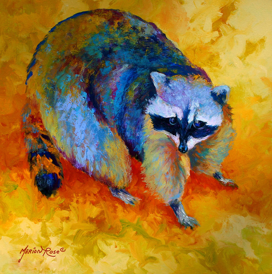 Racoon Painting - Coon by Marion Rose