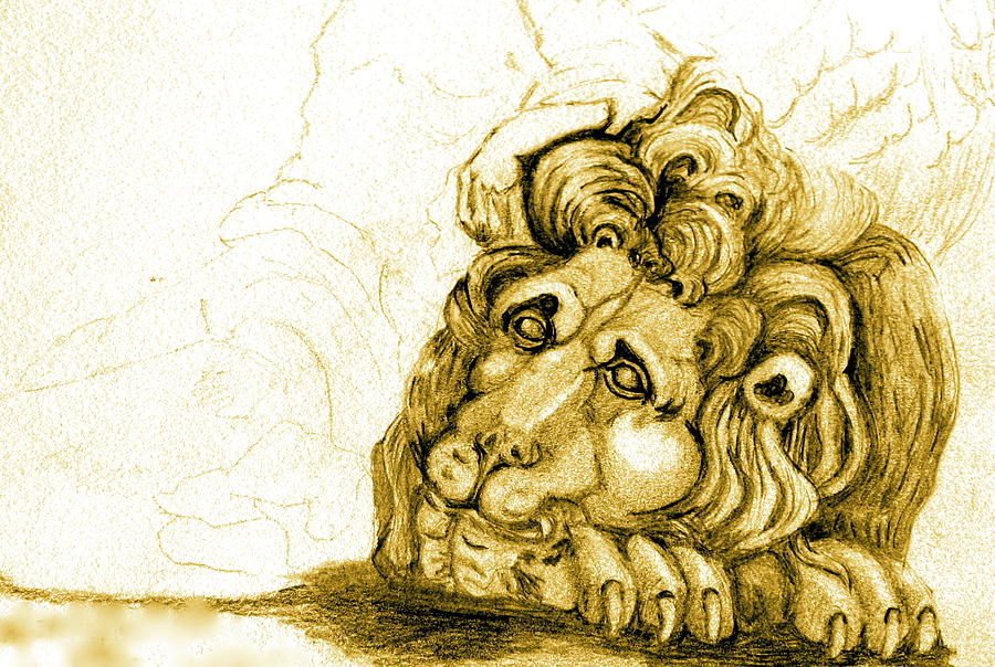Lion Drawing - Cordoba Lion by Dan Earle