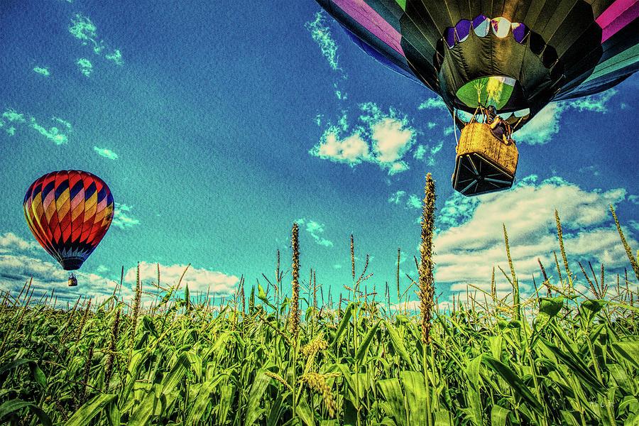 Farmland Photograph - Cornfield View Hot Air Balloons by Bob Orsillo