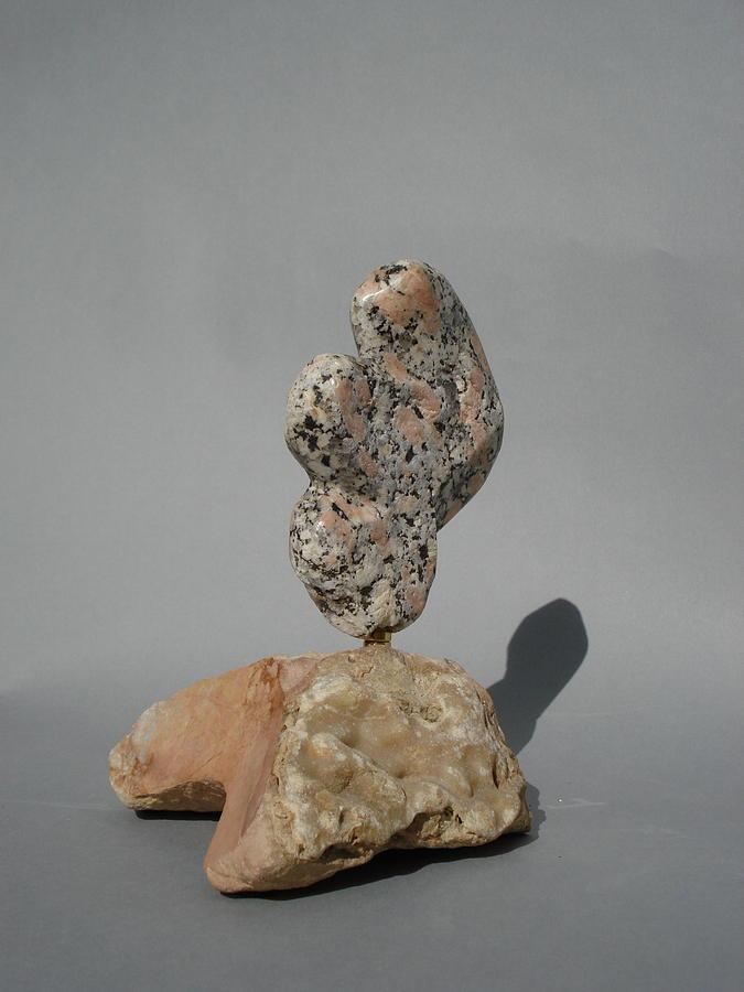 Precious Sculpture - Coromandles by Chaz  Della Porta