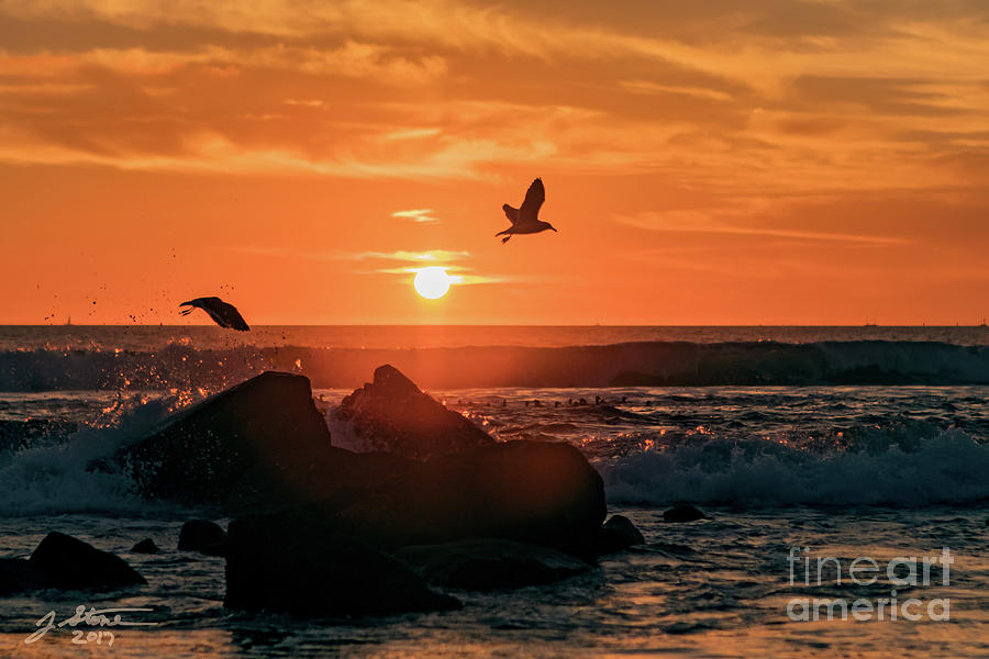 Coronado Sunset With Seagulls Photograph by Jeffrey Stone