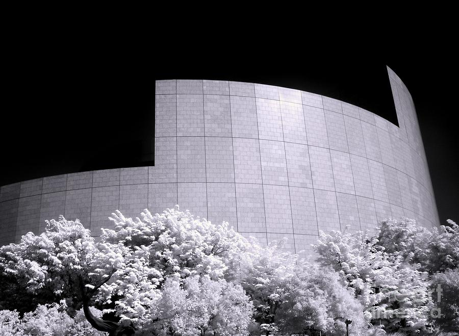 Modern Photograph - Corporate Architecture And Trees by Yali Shi