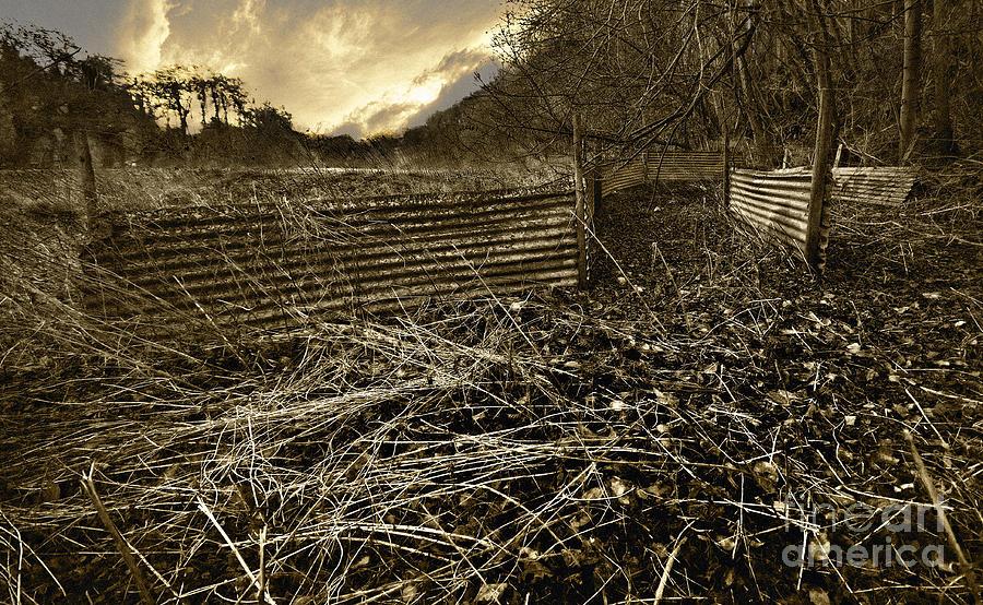 Corrugated Photograph - Corrugated Tin Pen by Meirion Matthias