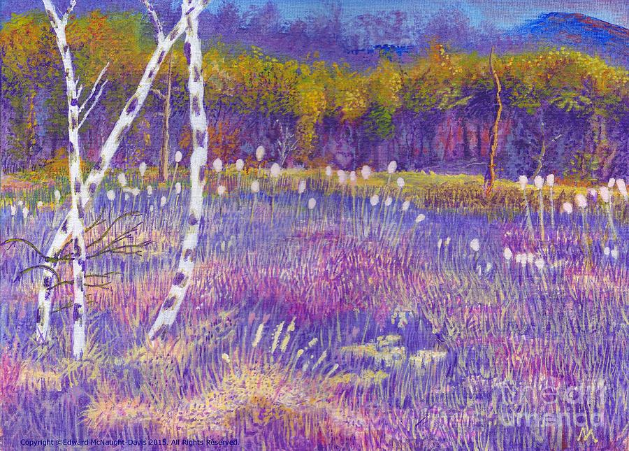 Cors Caron bulrushes with Purple Grasses by Edward McNaught-Davis