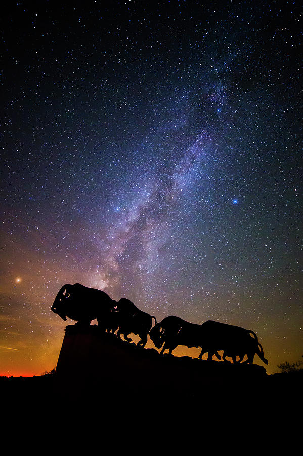 Caprock Canyons State Park Photograph - Cosmic Caprock Bison by Stephen Stookey