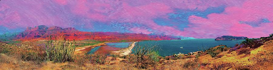 cosome bay Baja Mexico Painting by Martin Hardy