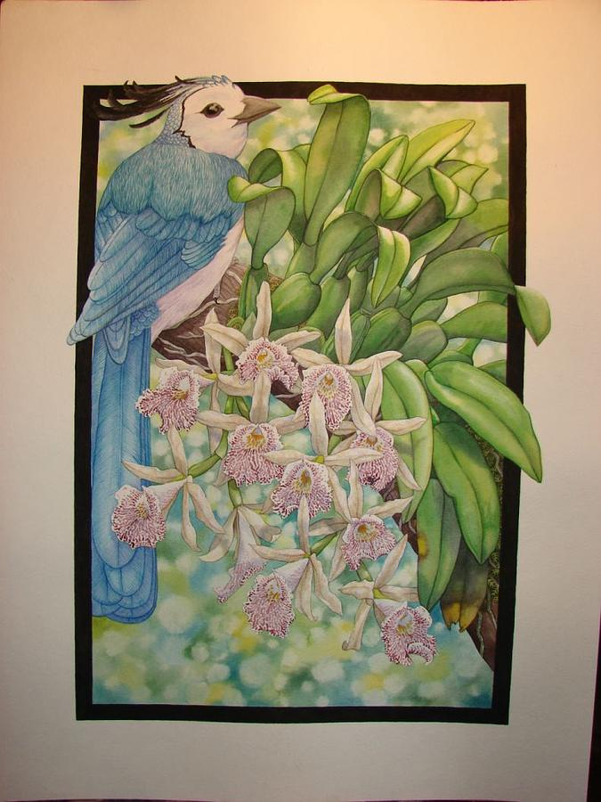 Orchids Painting - Costa Rica by Darren James Sturrock