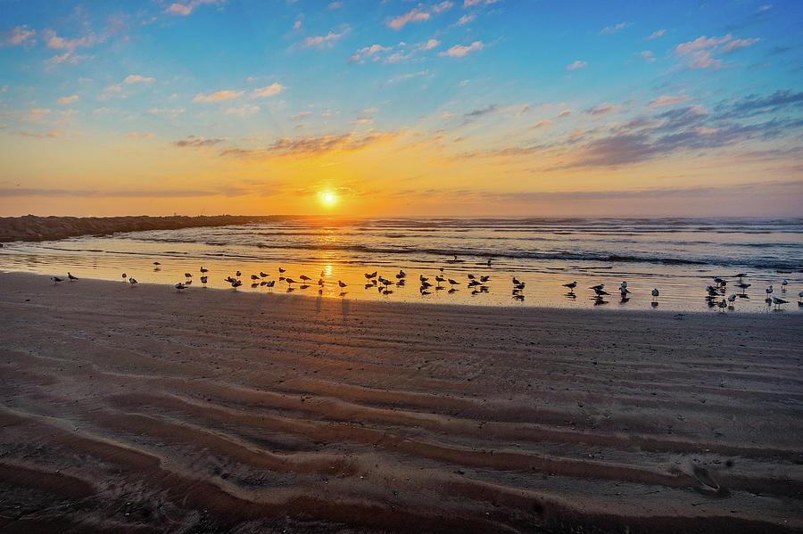 Coastal Sunrise by Dave Files