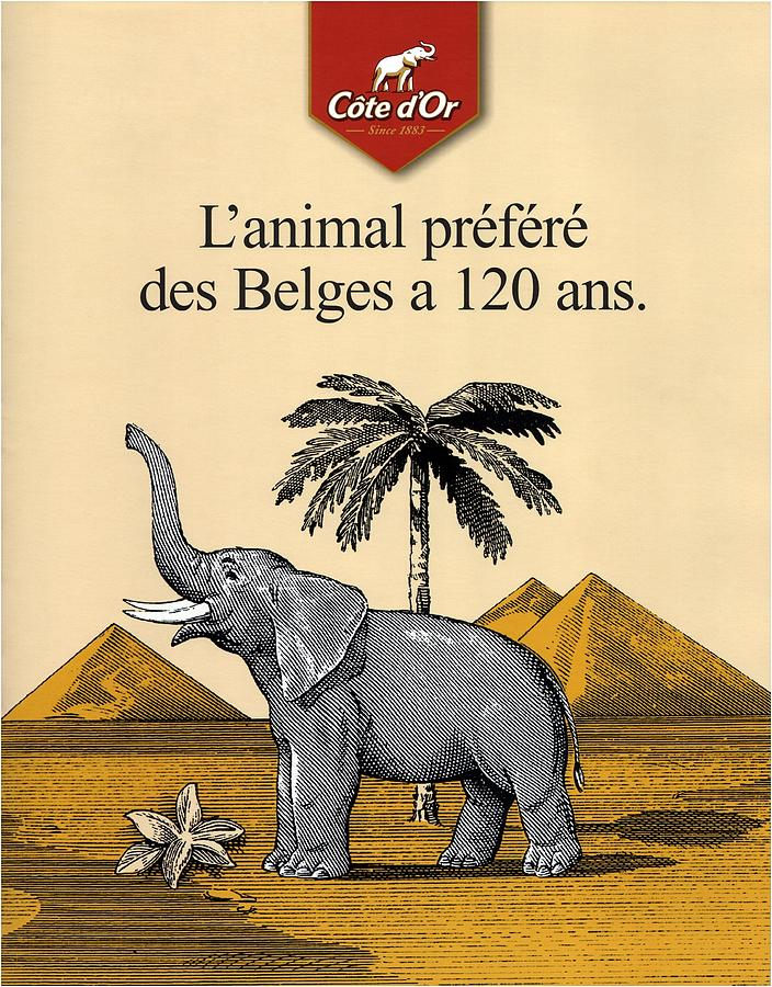 Cote D'or Mixed Media - Cote Dor Chocolate - Belgian Chocolate - Elephant Near The Egyptian Pyramids - Vintage Poster by Studio Grafiikka