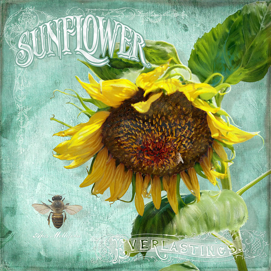 Sunflower Painting - Cottage Garden - Sunflower Standing Tall by Audrey Jeanne Roberts