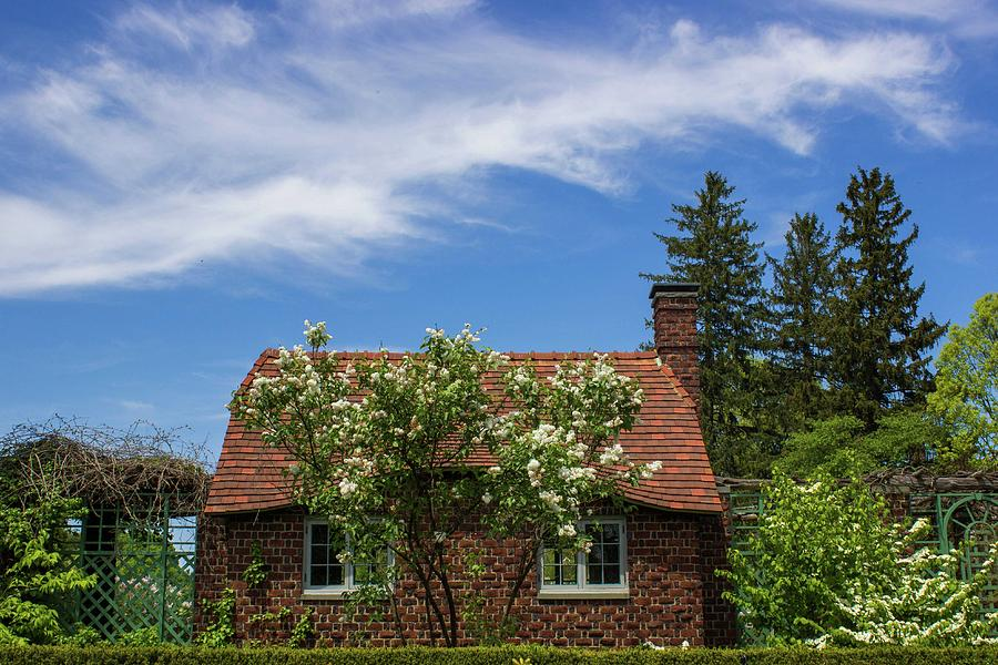 Cottage Photograph - Cottage In Spring by Roderick Breem