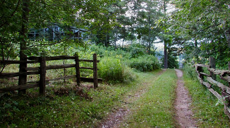 Country Photograph - Cottage Path by Juli Kreutner