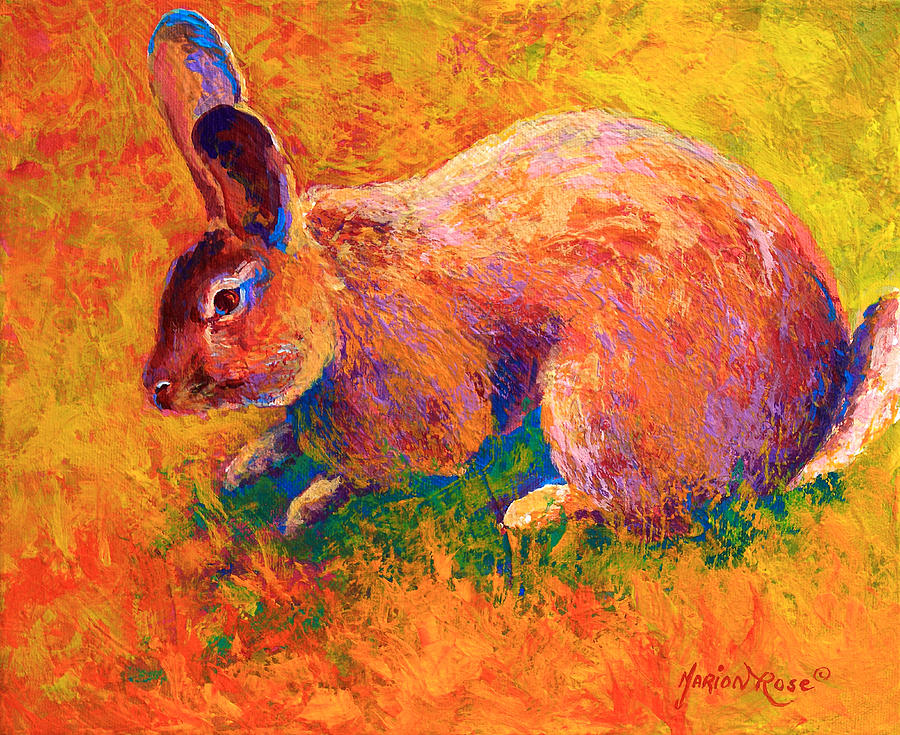 Rabbit Painting - Cottontail I by Marion Rose