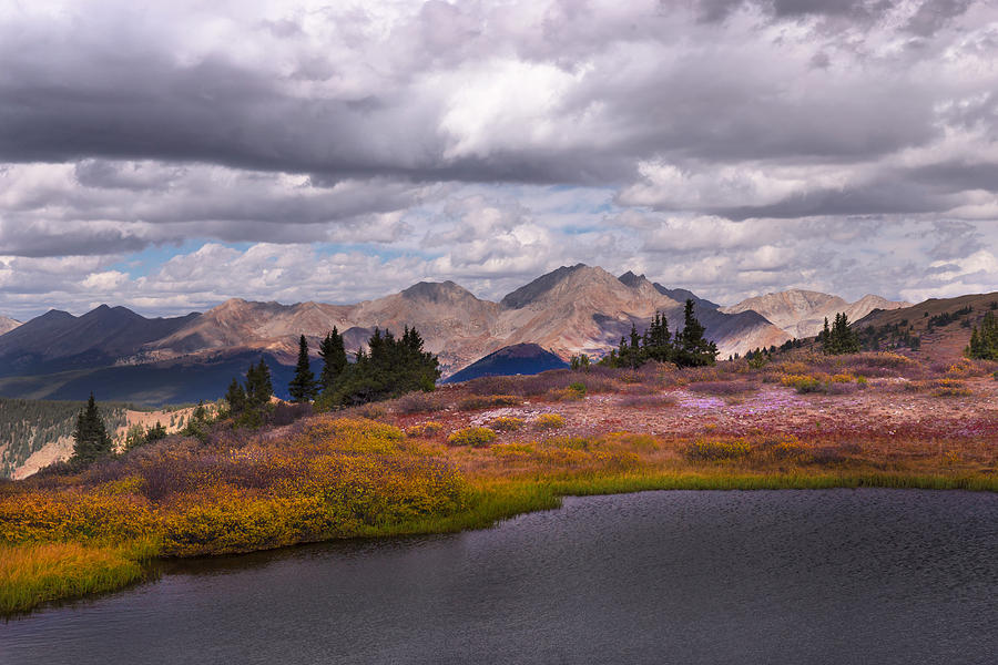 Colorado Photograph - Cottonwood Pass by Jonathan Steele