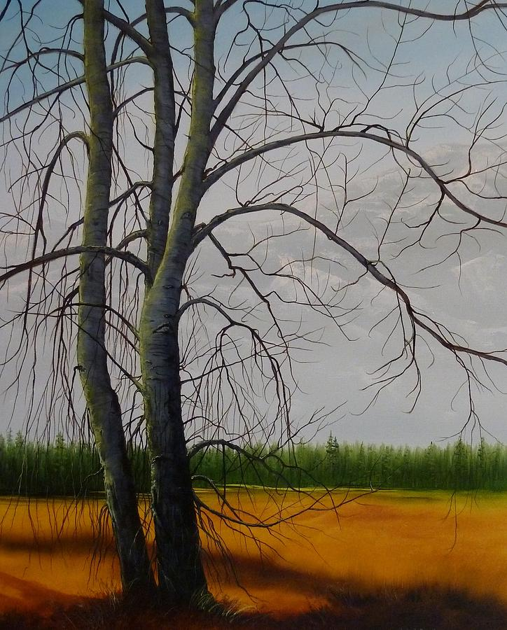 Cottonwoods by Judy Bradley