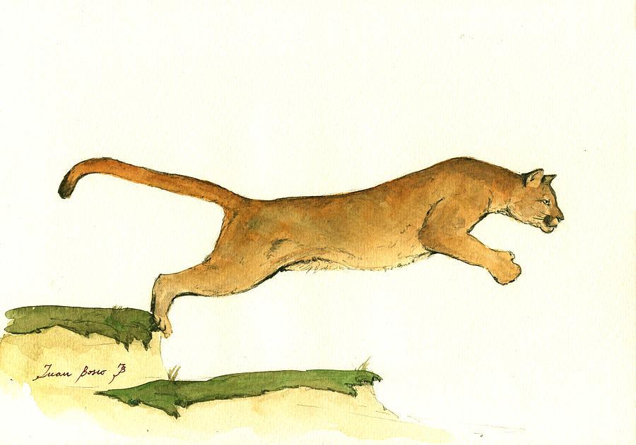 Cougar Print Painting - Cougar by Juan Bosco