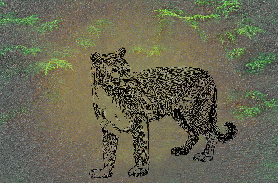 Cougar Mixed Media by Movie Poster Prints