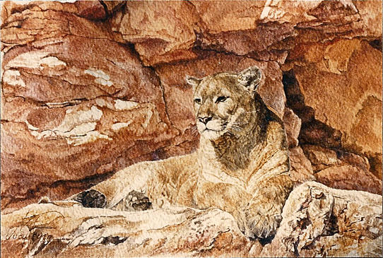 Cougar Painting - Cougar N Red Rocks by Judith Angell Meyer