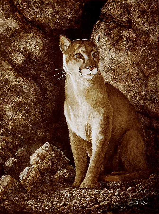 Cougar Painting - Cougar Wait Until Dark  by Frank Wilson