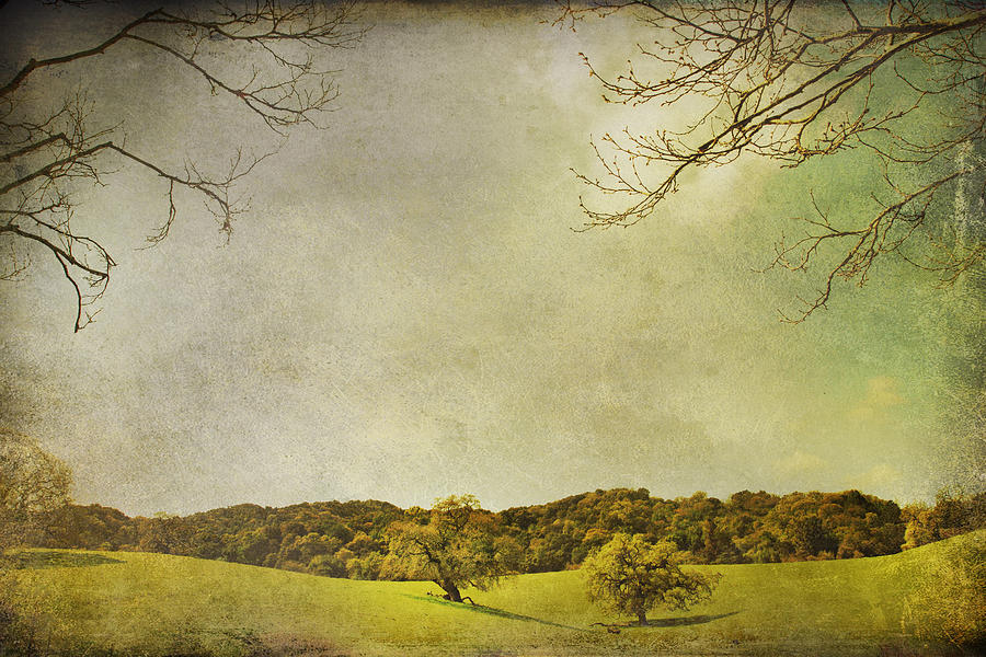 Landscape Photograph - Count On Me by Laurie Search
