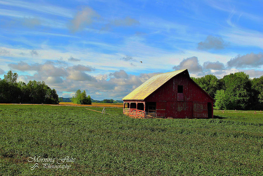 Country Barn Photograph by Michael Bodewitz