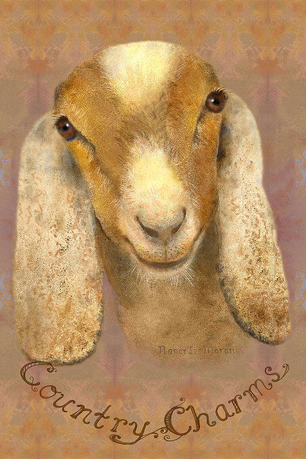 Goat Painting - Country Charms Nubian Goat With Bright Eyes by Nancy Lee Moran