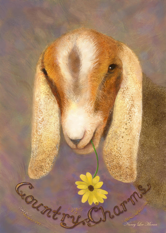 Goat Painting - Country Charms Nubian Goat With Daisy by Nancy Lee Moran