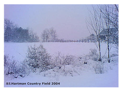 Landscape In Winter Photograph - Country Field by Sue Hartman