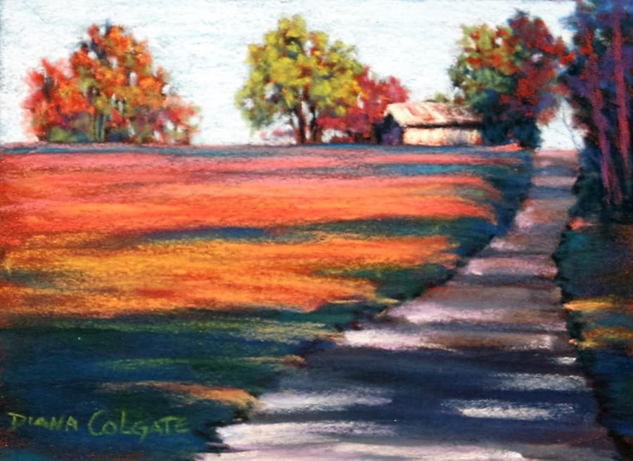 Country Lane by Diana Colgate